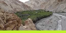 http://www.thegreatnext.com/Trekking Adventure Kullu Manali Trekking Day Adventures
