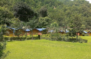 Jungle Camping in Rishikesh (1N/2D)