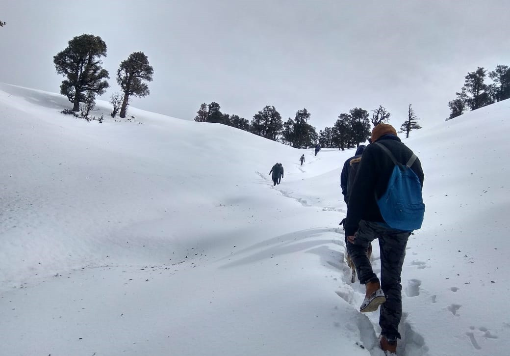 http://m.thegreatnext.com/Nagtibba Trekking Uttarakhand Adventure Travel The Great Next