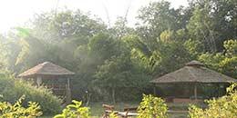 http://www.thegreatnext.com/Camping Campsite Corbett Nature Wildlife Himalayas Kumaon Uttarakhand
