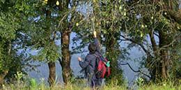 http://www.thegreatnext.com/Camping Campsite Mukteshwar Snow Trek Adventure Kumaon Uttarakhand