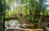http://m.thegreatnext.com/Sajan Nature Palghar Tree Top Camp Stay Maharashtra Adventure Eco Offbeat Travel