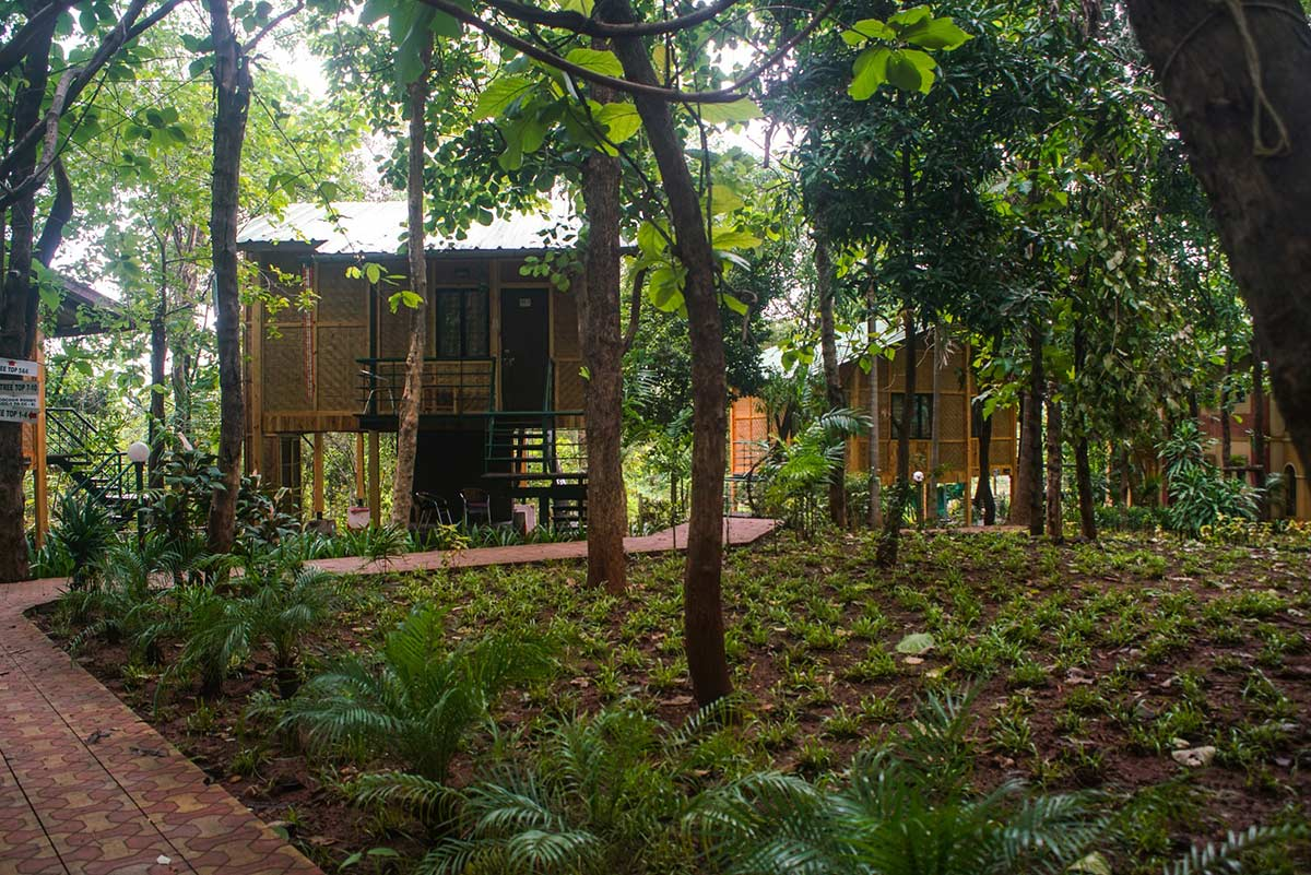 Book A Fun Weekend Tree House Adventure Trip With