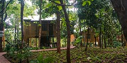 http://m.thegreatnext.com/Sajan Nature Palghar Tree Top Camp Stay Maharashtra Adventure Eco Offbeat Travel