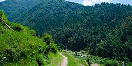 http://m.thegreatnext.com/Kareri Lake Indrahar Pass Trekking Uttarakhand McLeodganj Camping