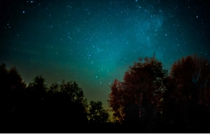 Kalavantin Fireflies Trek