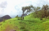 http://m.thegreatnext.com/Peb-Vikatgad Fort Trek Maharashtra Monsoon Trek Sahyadri Forests
