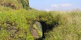 http://www.thegreatnext.com/Ratangad Fort Trek Maharashtra Monsoon Trekking Adventure Travel Mountains Nature