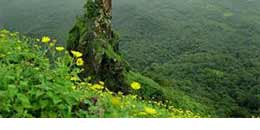http://www.thegreatnext.com/Sagargad Fort Trek Maharashtra Monsoon Trekking Nature Mountains Adventure Activities