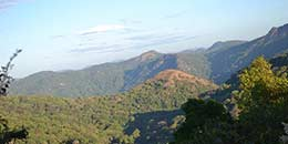 http://m.thegreatnext.com/Kumara Parvatha Trek Bangalore Trek Sahyadri Forests Monsoon Trek The Great Next