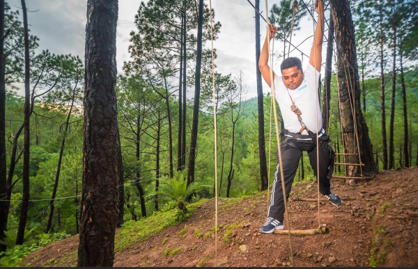 Pine forest camping near Shimla
