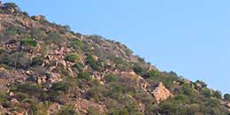 http://m.thegreatnext.com/Makalidurga Fort Trek Southern Sahyadris The Great Next