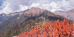 http://m.thegreatnext.com/Marahni Trek Great Himalayan National Park Pekhri Kundri Meadow Himalayas Adventure The Great Next