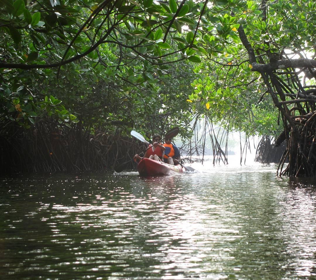 http://m.thegreatnext.com/Scuba Diving Kayaking Havelock Andaman Nicobar Adventure