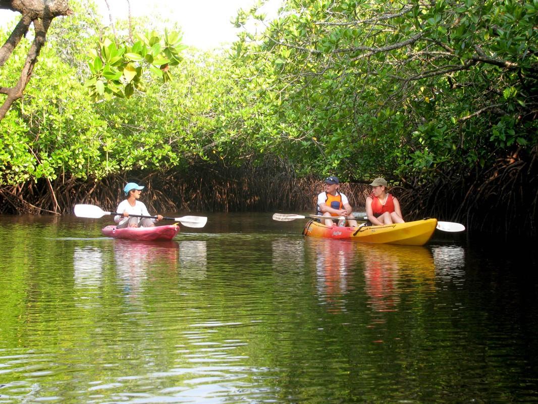 http://www.thegreatnext.com/Scuba Diving Kayaking Havelock Andaman Nicobar Adventure