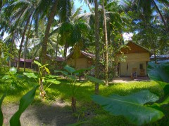 http://m.thegreatnext.com/Scuba Diving Discover Scuba DSD Havelock Andaman Nicobar