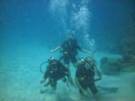 http://www.thegreatnext.com/Scuba Diving Discover Scuba DSD Havelock Andaman Nicobar