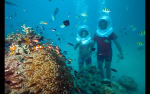Sea Walk in North Bay Andamans