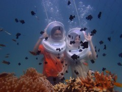 http://m.thegreatnext.com/Sea Walking North Bay Port Blair Andaman Nicobar Underwater Adventure Activity Travel Marine life