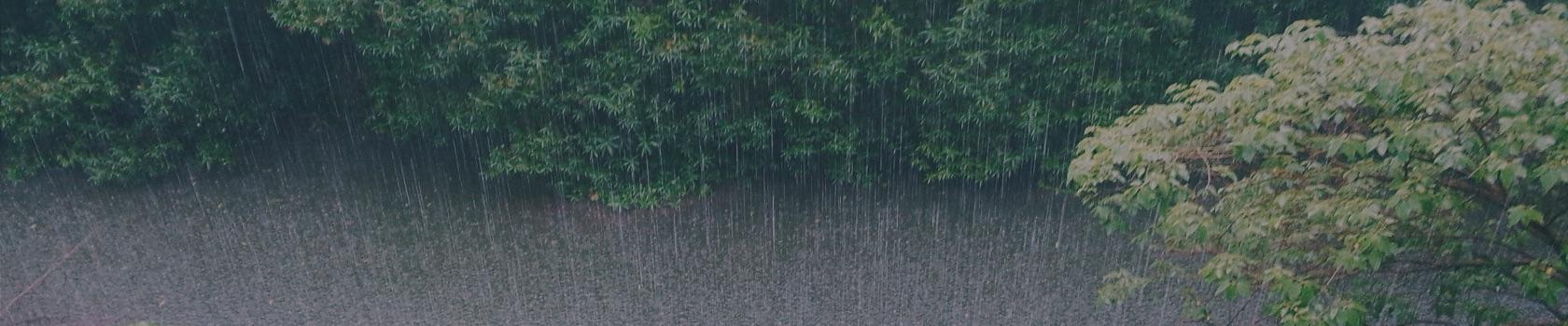 monsoon-treks-in-himachal-pradesh