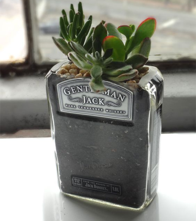 Empty Whiskey Bottle| Planter