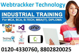 SAP FICO Training Institute in Noida Tickets by aashutosh