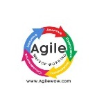 Agile Ways of Working profile image