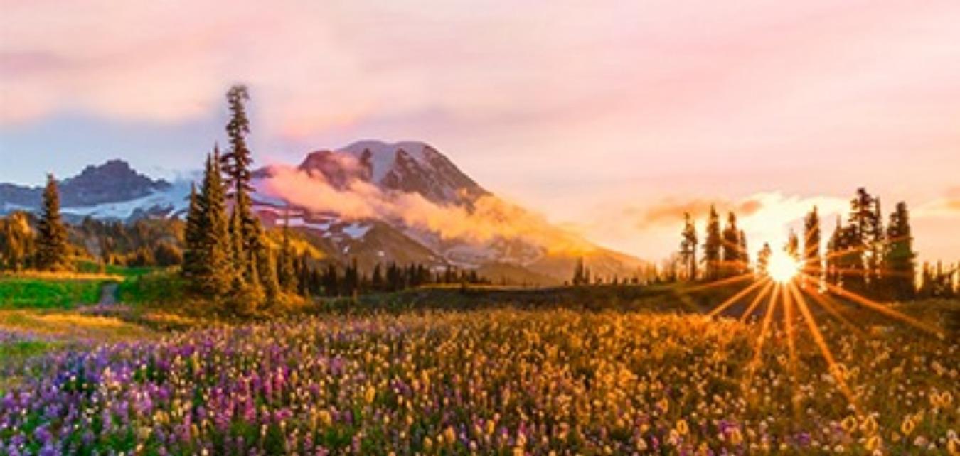 Valley of flower & Hemkund Sahib Trek Tickets by Dare2Gear