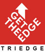 Jobs and Internship at Triedge