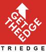 Jobs and Internship at Triedge