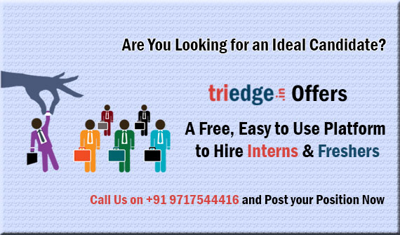 Triedge-Jobs and Internship for students