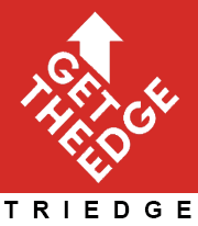TriEdge-'Resume Writing Service' Professional C.V, Profile ,Global Formats, Curriculum Vitae