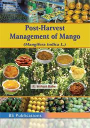 Post Harvest Management of Mango Mangifera indica L