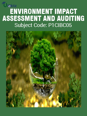 ENVIRONMENTAL IMPACT ASSESSMENT AND AUDITING