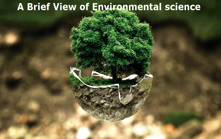 A Brief View of Environmental science