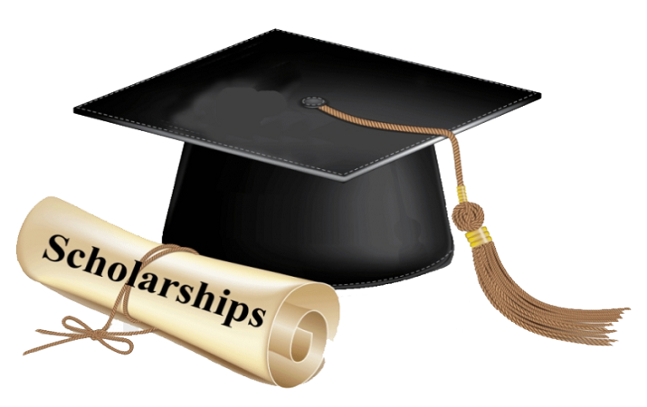 Best Online Search Platforms for Higher Education Scholarships