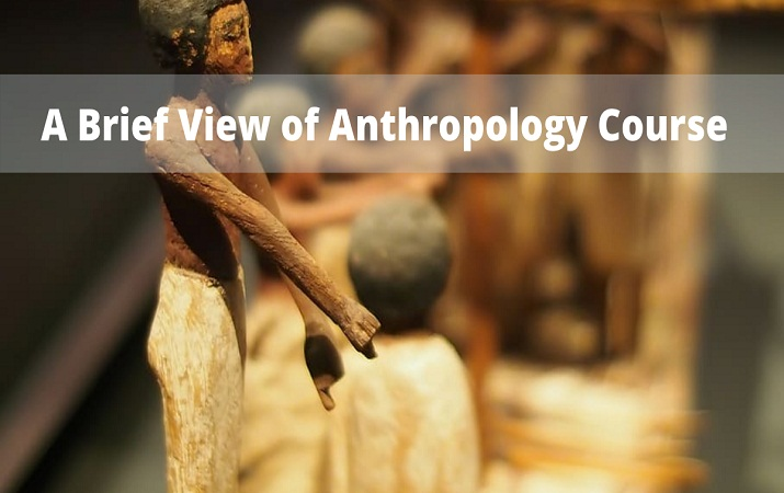 A Brief View of Anthropology Course