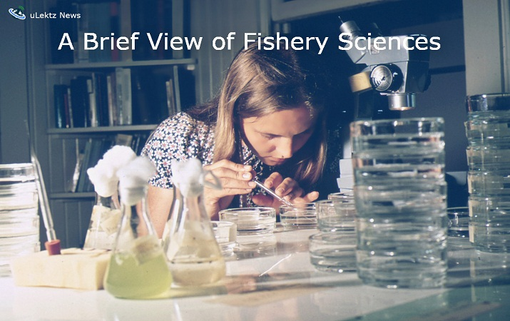 A Brief View of Fishery Sciences