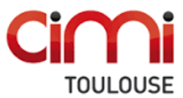 Cimi Toulouse Doctoral Fellowships 2020