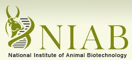 National Institute of Animal Biotechnology (NIAB) Senior Research Fellowship 2020