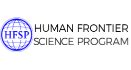 HFSP Post Doctoral Fellowship, France 2020-21