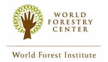WFI International Fellowship 2020