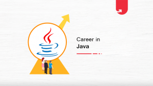 Career in Java: How to Make a Successful Career in Java in 2021