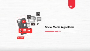 Social Media Algorithms: Everything You Need to Know