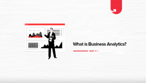 What is Business Analytics? Career, Salary & Job Roles [2021]
