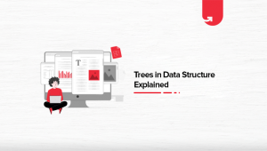 4 Types of Trees in Data Structure Explained: Properties & Applications