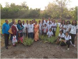 Visit to aloe vera farms and processing industry at NSS camp at markal Village, Tal. Khed