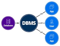 volp | DBMS introduction