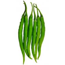 Marcha 1 kg (मिर्ची  - મરચા - Medium Spicy)