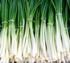 Green Onion 1 Kg (हरा प्याज - લીલી ડુંગળી - Spring Onion)